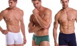 upman-moda-inverno-2015-moda-intima-moda-masculina-looks-da-moda-1